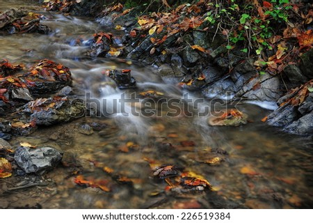 Little autumn creek flowing through a stone trough