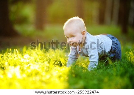 Little baby boy at the sunny park  - stock photo