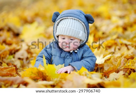 Little baby boy in the autumn leaves  - stock photo