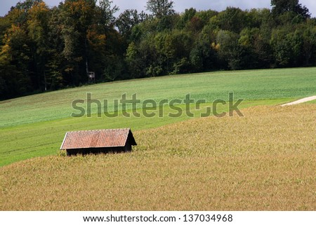 Little barn on the yellow and green fields - stock photo