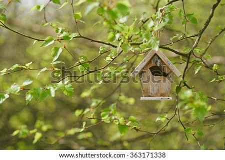 Little Birdhouse in Spring new birch leaves - stock photo
