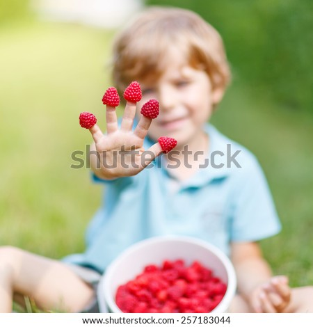 Little blond boy happy about his harvest on raspberry farm on warm hot sunny day, outdoors. Selective focus on hand with berries - stock photo