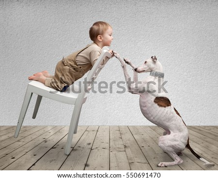 little boy and a dog playing in the room