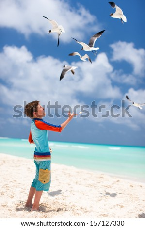Little boy and a flock of seagulls at beach - stock photo