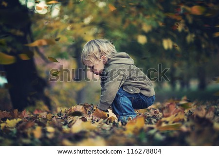 Little boy and autumn leaves - stock photo