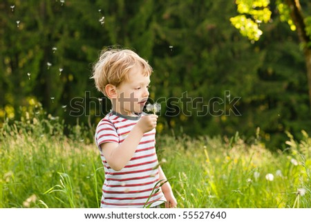 Little boy blowing dandelion seed for a whish on a meadow outdoors in summer