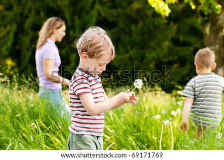 Little boy blowing dandelion seed for a wish on a meadow outdoors in summer, in the background his brother and mother