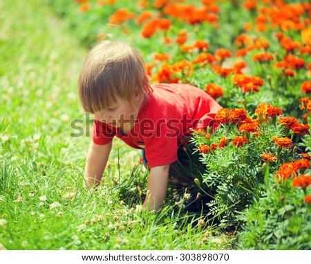 Little boy crawls on all fours in the lawn - stock photo