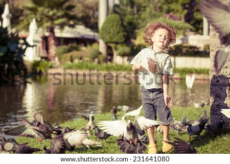 little boy feeding pigeons in the park at the day time - stock photo