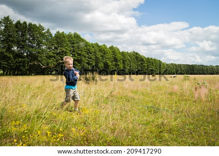 Little boy in a field of tall grass. Kid playing, running in nature. A child plays, field, grass, happiness, childhood. - The idea of a carefree childhood. Article about children games.