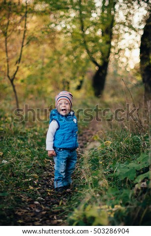 little boy in blue in the autumn park