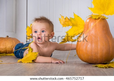 little boy in the pumpkins and leaves