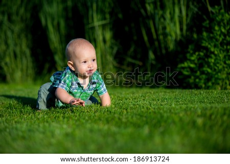 little boy in the spring or summer park sitting on the grass in sunshine day - stock photo