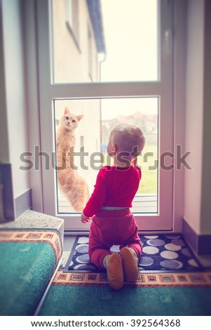 little boy is playing with cat