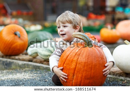 Little boy of three years holding huge orange pumpkin on pumpkin patch on farm