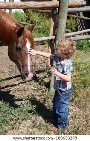 Little boy petting a horse by the fence - stock photo