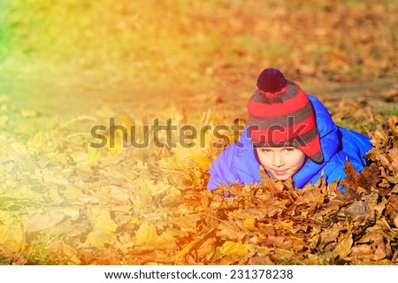 little boy playing in autumn leaves