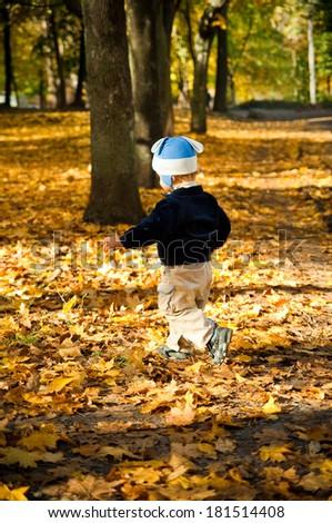 little boy running through the orange foliage in the park - stock photo