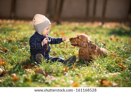 little boy sitting on the grass with a dog - stock photo