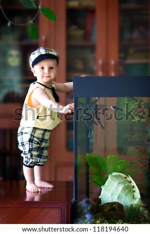 little boy standing near the aquarium - stock photo