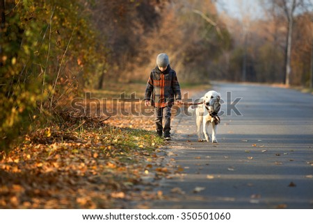 Little boy walking with a golden retriever  in autumn park - stock photo