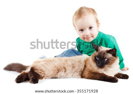 little boy with balinese cat isolated on white background - stock photo