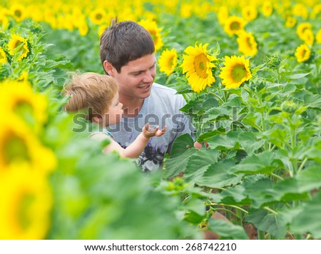 Little boy with father on sunflower field - stock photo