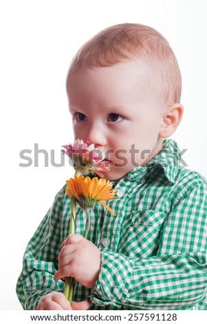 little boy with flower - stock photo