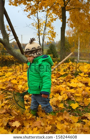 little boy with rake