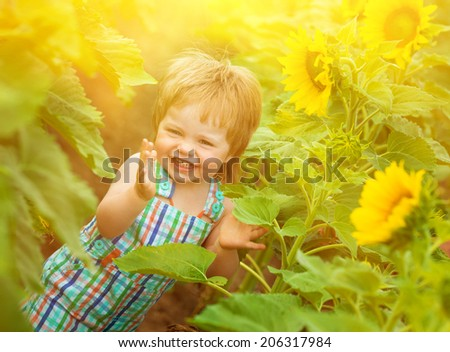 little boy with sunflower in the field