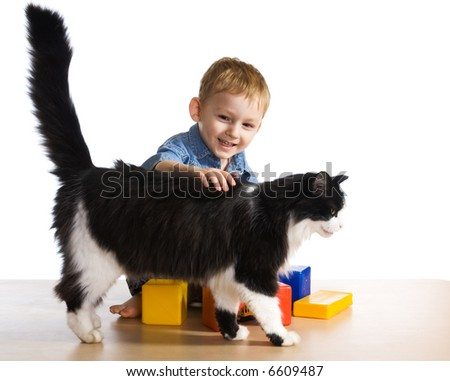 Little boy with the cat - stock photo