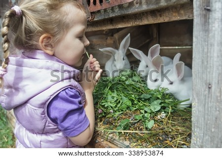 Little braided girl in warm hoodied violet nylon vest  is feeding farm domestic rabbits with fresh red clover plants