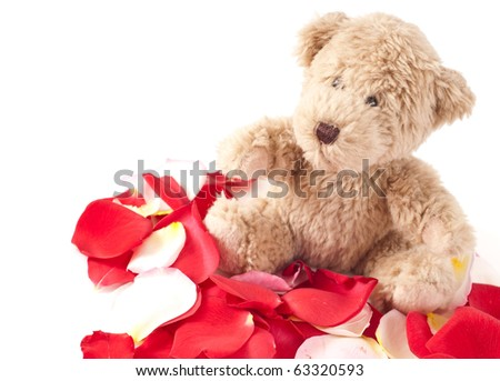 Little Brown Teddy on Rose Petals - stock photo