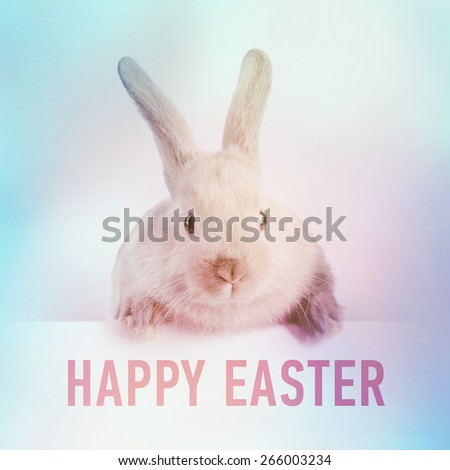 Little bunny holding a sign saying: Happy Easter Day - instagram style - stock photo