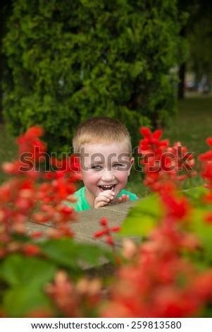 Little caucasian boy hiding in red flowers - stock photo