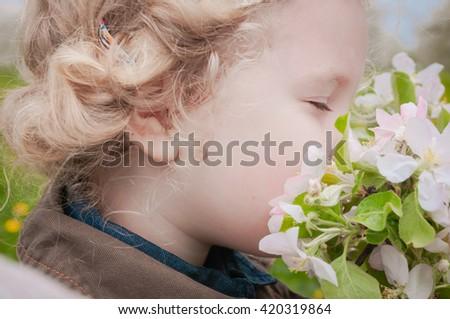 little Caucasian girl enjoying the aroma of apple blossoms - stock photo