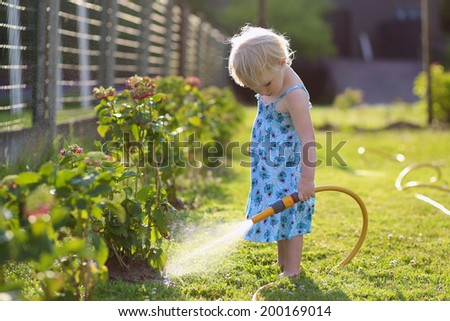 Little child, adorable blonde toddler girl, watering the plants, beautiful hortensia flowers, from hose spray in the garden at the backyard of the house on a sunny summer evening - stock photo