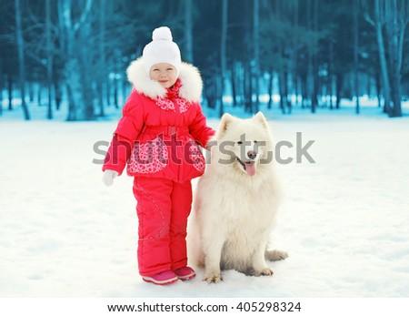 Little child and white Samoyed dog walking in winter day - stock photo