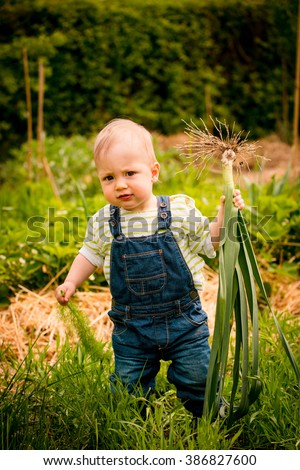 Little child carrying leeks - backyard garden scene