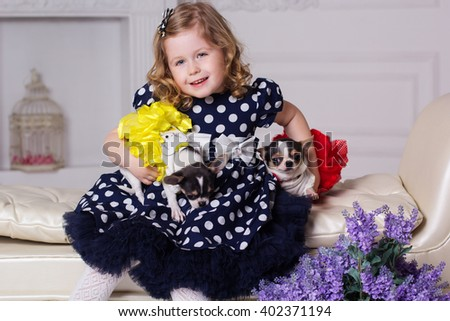 Little child girl is holding two small dogs - stock photo