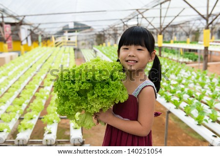 Little child is holding vegetable in hydroponic farm - stock photo
