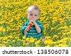 Little child sitting on a big dandelion meadow - stock photo
