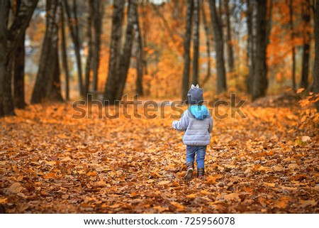 Little child walking in the autumn forest