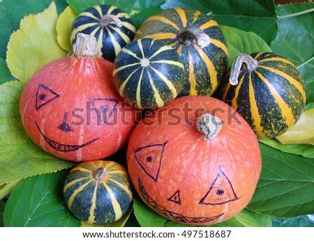 little colorful pumpkins on autumn leaves