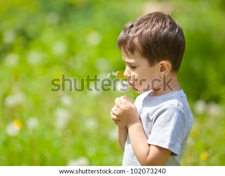 Little cute boy blowing dandelion on blurred field