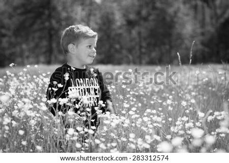 little cute boy child in a wonderful field of yellow flowers smiling and laughing in black and white - stock photo