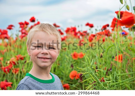 Little cute boy in field with red poppies and blue sky - stock photo