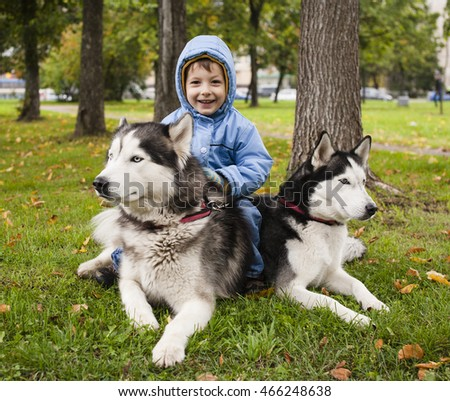 little cute boy with husky two dog in green park playing, smiling happy
