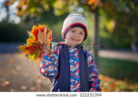Little cute boy with leaves in hand in the park, smiling - stock photo