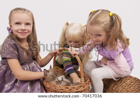 little cute caucasian blond girls playing with Burmese cats standing isolated over white background and keeping animals in the big wicker basket